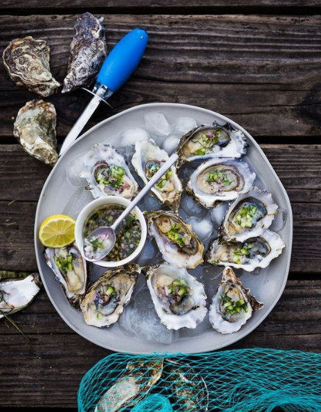 oysters for oyster event