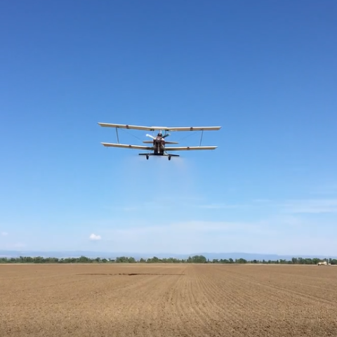 plane dropping rice seed onto farm